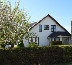 Vorderansicht mit unserem Apfelbaum Gästehaus Linde