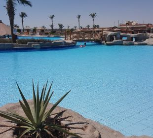 Richtig schönes Pool  SUNRISE Select Royal Makadi Resort