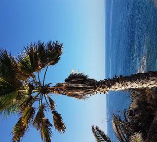 Hotelbilder Allsun Hotel Los Hibiscos Costa Adeje Holidaycheck
