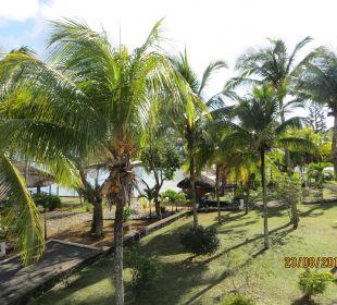 Blick vom Balkon Coral Azur Beach Resort