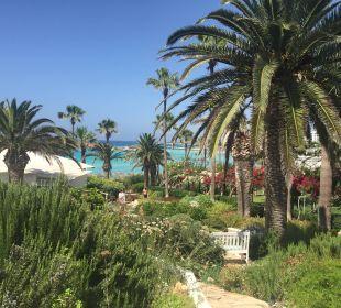 Schöne gepflegte Gartenanlage Hotel Nissi Beach Resort
