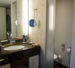 Offenes Bad, WC Pullman Dresden Newa