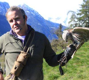 Markus Pircher bei der Greifvogel-Demonstration Hotel Panorama