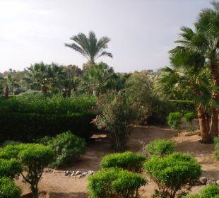 Blick vom Balkon Arena Inn Hotel, El Gouna