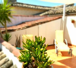 Private Terrace in Rooftop Apartment El Granado
