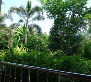 Ausblick von der Terrasse. Guest House Green Garden House
