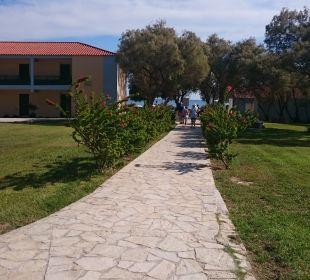 Gartenanlage Hotel Louis Zante Beach