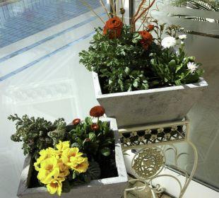 Blumen Ferienwohnung Vive Diem