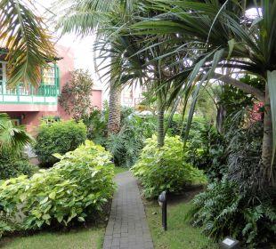 Gartenanlage Hotel Hacienda San Jorge