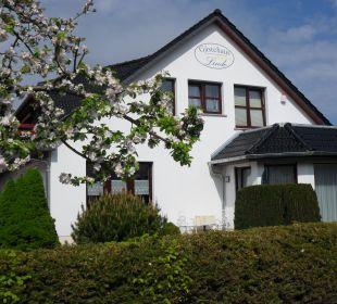 Ostseite Gästehaus Linde