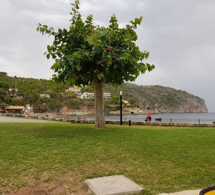 Gartenanlage Olimarotel Gran Camp de Mar