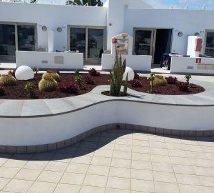 Gepflegter Außenbereich Hotel Las Costas