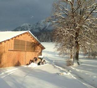 Unser neu erbaute Rinderstall - das MUH-Hotel Bauernhof Lindenhof