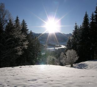 Winter Alpenflora Ferienwohnungen