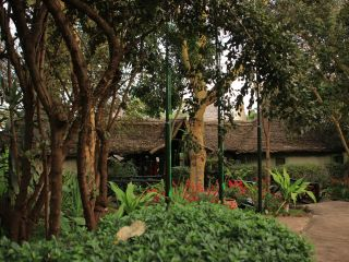 Hotel Lake Manyara Serena Safari Lodge