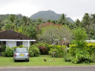 Hotel Palm Grove Lodges
