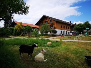Hirzinger Gasthof Zur Post In Riedering Holidaycheck