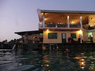 Hotel Buddy Dive Resort