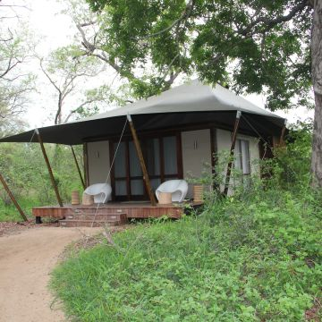 Ngala Tented Safari Camp