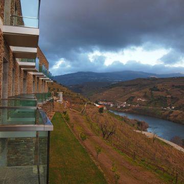 Hotel Delfim Douro