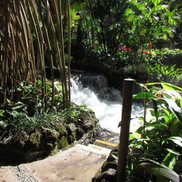 Hotel Tabacon Hot Springs