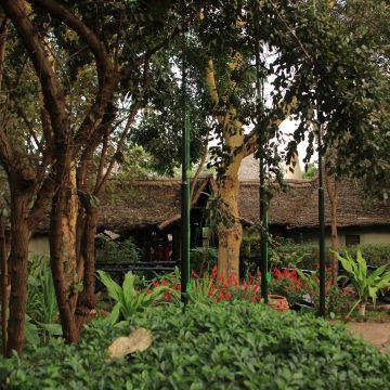 Hotel Lake Manyara Serena Safari Lodge