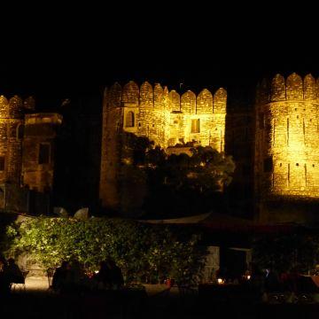 Hotel Fort Khejarla