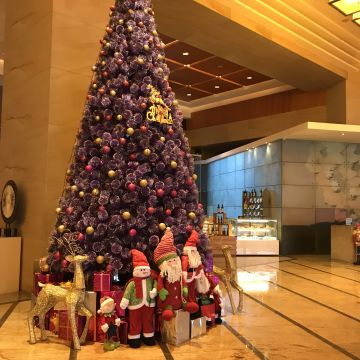 Hotel Hyatt Regency Dongguan