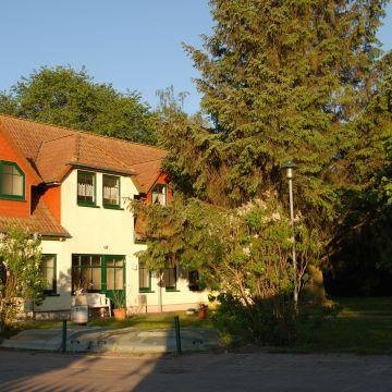 Haflinger Hof