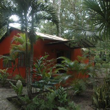 Jungle Lodge Posada De La Selva