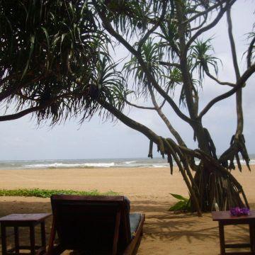 Hotel AIDA II - Induruwa