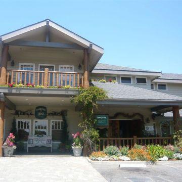 Hotel Cambria Pines Lodge