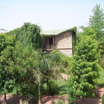 Ranthambore Forest Resort