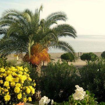 Haus des Gartens / Pension Nikos