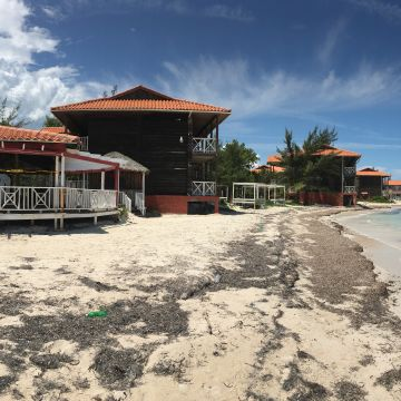Mangos Jamaica Boutiqe Beach Resort