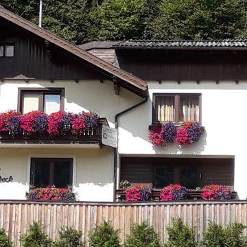 My Urlaub Appartement - Haus Waldeck