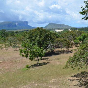 Hotel Campamento Parakaupa