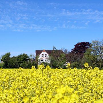 Ferienwohnung Hof Osterholz