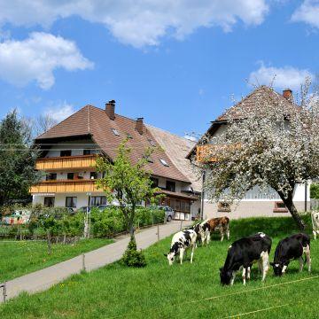 Fischerhof - Urlaub auf dem Bauernhof