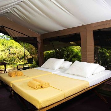 Tented Camp Wild Trails by Amaya
