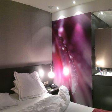 Hotel Du Chapeau-Rouge