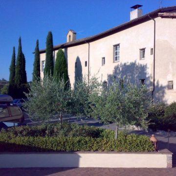 Abbazia Dei Collemedio Hotel & Resort