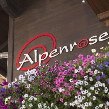 Alpenrose Hotel-Pension