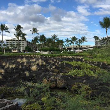 Hotel Waikoloa Beach Marriott