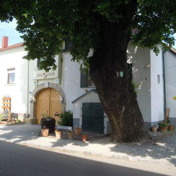 Apartements Weingut Tinhof