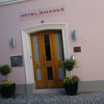 Hotel Amadeo