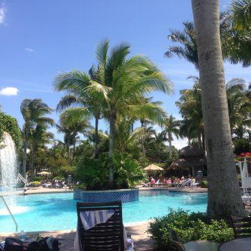 Hotel Hyatt Coconut Plantation
