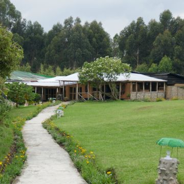 Gorilla Montain View Lodge