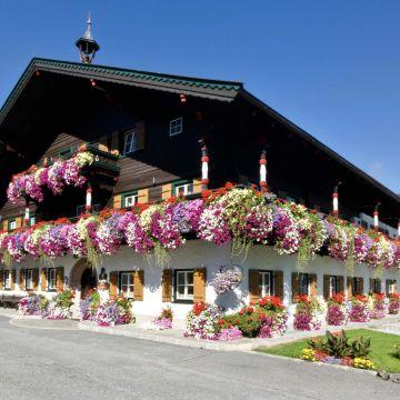 Thomanhof Ferienwohnungen