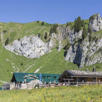 Berghütte Stie Alm